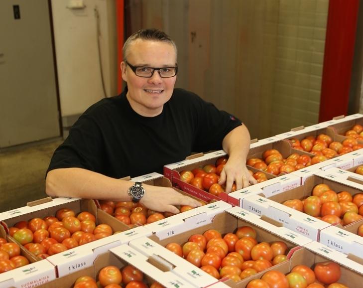 Niclas Hultholm pitää tämän kevään tomaattimarkkinoita helppoina.