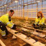 Tuomo Käyrä (56 v.) ja Silja Väisänen (18 v.) ovat aikuisopiskelijoita. Tuomolla on takana 26 työvuotta Postissa ja hän on mielissään, kun pääsee kouluttautumaan puutarhurin ammattiin.